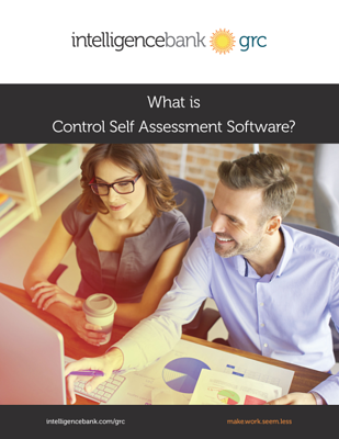 Control Self Assessment cover